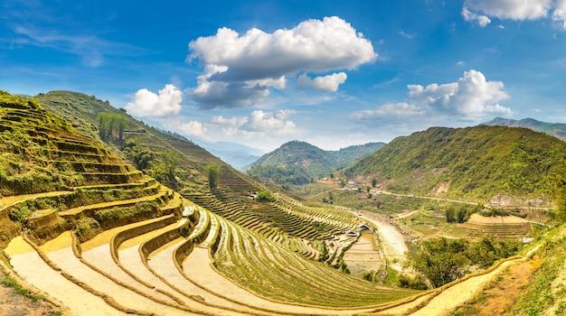 Terraced rice field in sapa