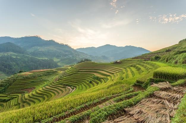 Mu cang chai, yenbai, 북부 베트남의 계단식 논 풍경