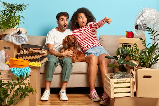 Terrfied mixed race family couple point into distance, see amazing thing, notice something terrible, sit on comfortable sofa with dog, change place of living, surrounded with packages, personal stuff