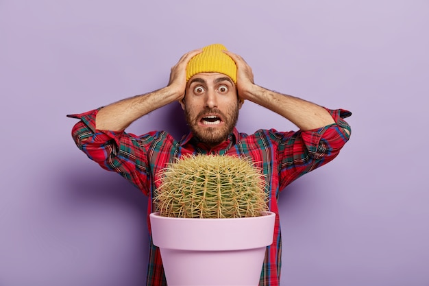 Terrified young man keeps both hands on head, cannot believe he grew such big plant at home, wears checkered shirt and yellow hat