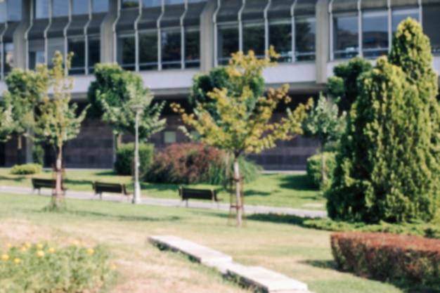 緑の木を持つ大学の領土