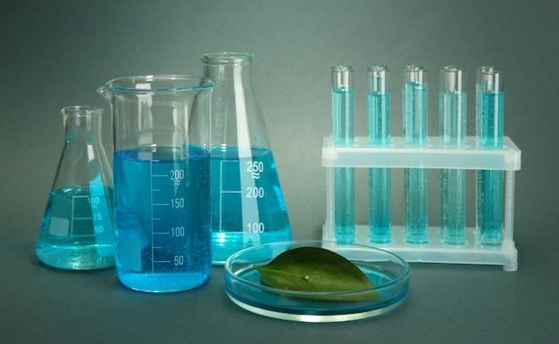Пробирки и лист тестируются в чашке петри