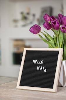 Text hello may on letter board and bouquet of purple tulips flowers