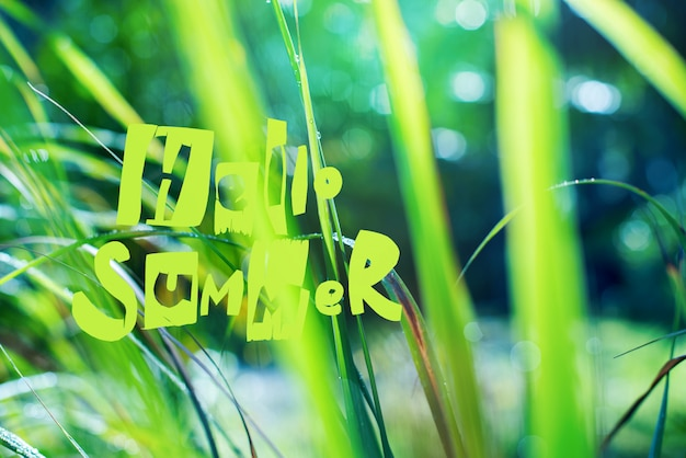 Text hello summer on background with dew