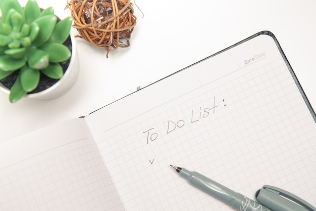 Text to do list written on opened notebook, sketchbook, succulent