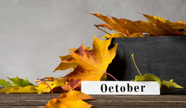 Text october and bright maple orange leaves