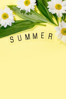 노란색 배경에 문자 및 필드 chamomiles 꽃에서 텍스트 summer. 인사말 카드 평면 위치 복사 공간 개념 안녕하세요 여름, 여름.