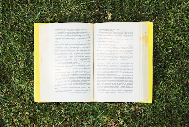Textbook with colorful hardcover on meadow