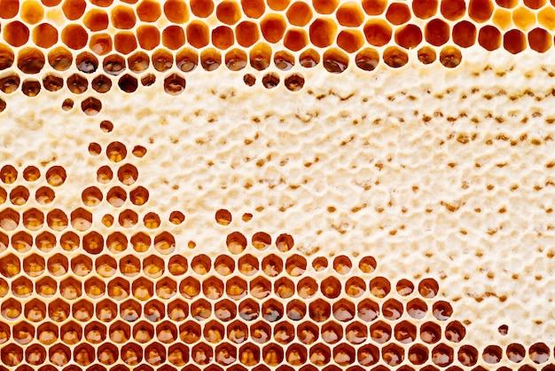 Текстура и узор участка восковых сот из пчелиного улья, заполненного золотым медом
