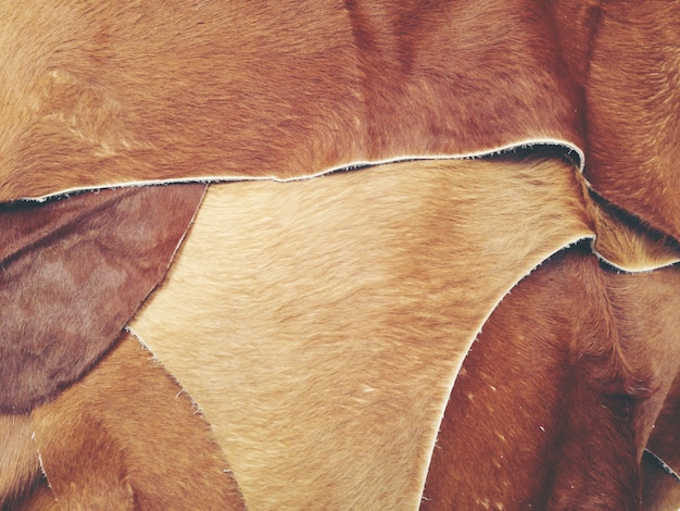 Texture background of good quality cow leather for sale