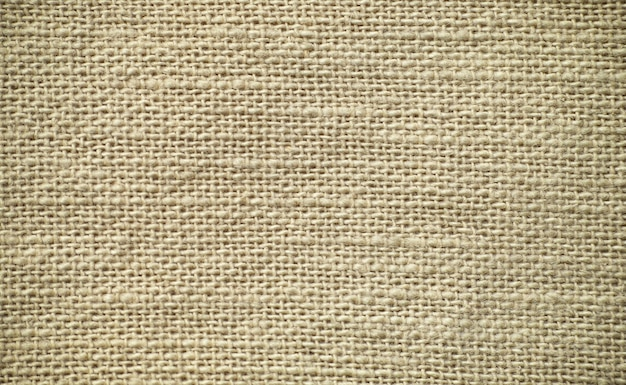 Texture of brown sack canvas with delicate grid to use as grunge background