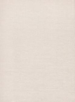 Texture canvas fabric.