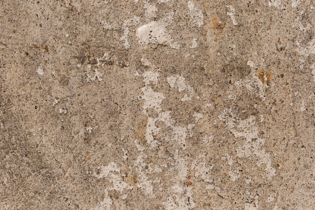 Texture of close up concrete wall