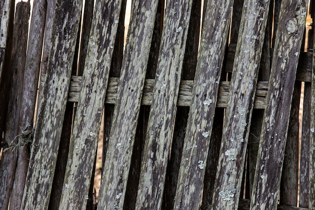 Texture: closeup of worn and unpainted wooden fence, typical of the countryside of brazil. sao paulo state