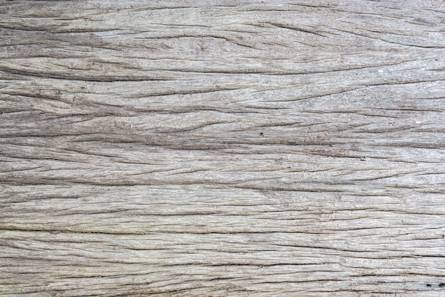 Texture of crack wood