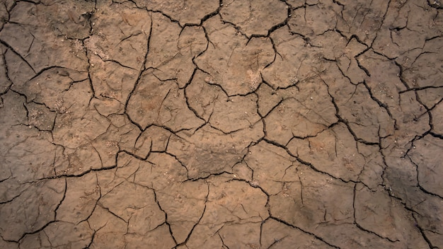 Texture of cracked soil