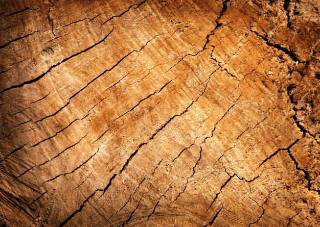 Texture cracked wood board for your design