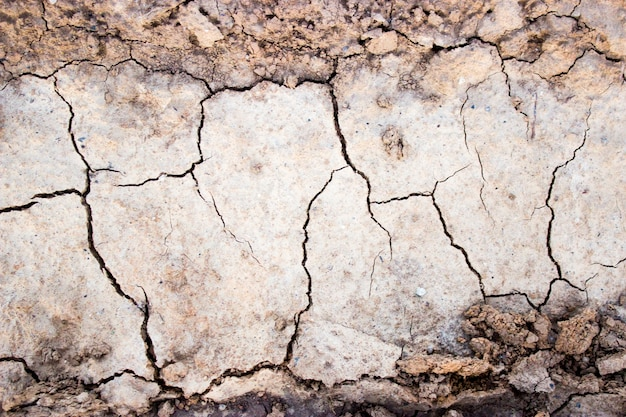 Texture of cracks in dry ground