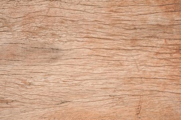 Texture of damaged bark