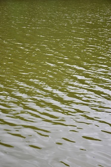 The texture of dark river water under the influence of wind, imprinted in perspective. vertical image