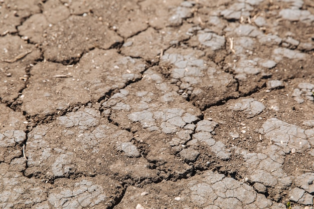Texture of dried cracked earth because of no rain and drought season example of changing climate
