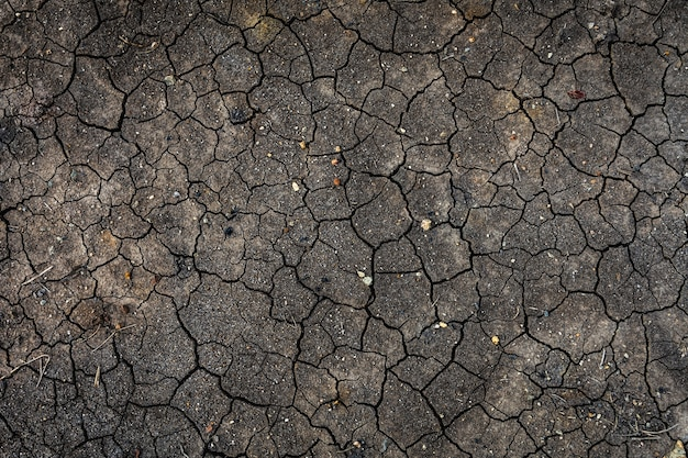 Texture of dried cracked earth because of no rain and drought season.