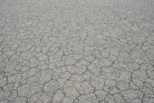 Texture of dried gray mud, dried earth Premium Photo