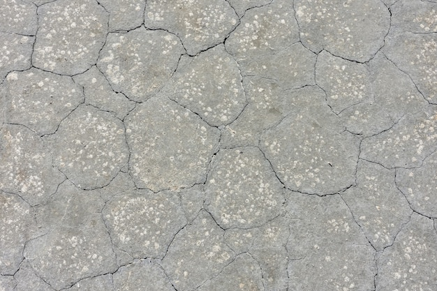 Texture of dried gray mud, dried earth