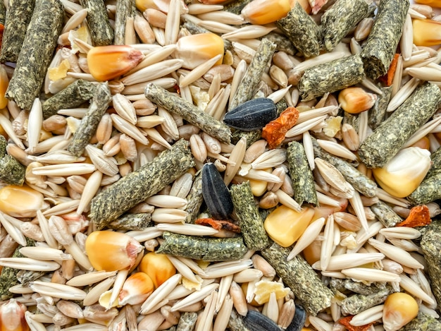 The texture of food for rodents from oats, grass pellets, animal feed, corn, wheat.