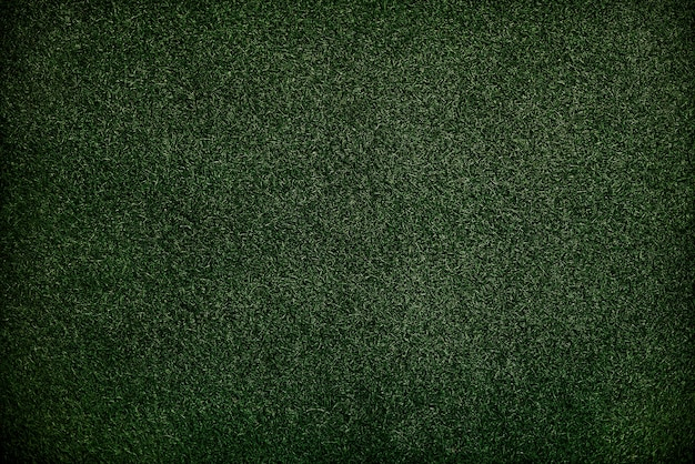 Texture  green grass surface wallpaper concept