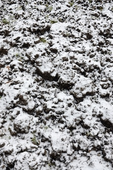 The texture of the ground, covered with a thin layer of snow. the soil of the garden in winter