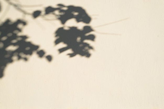 Texture of a light yellow wall with a shadow from a tree branch, copy space. outdoor textural background.