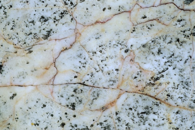 Texture line marble background vintage