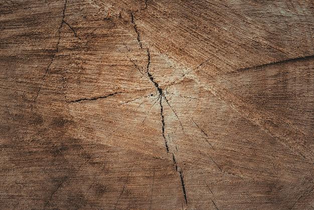 Текстура срезанной древесины крупным планом тонированный фон