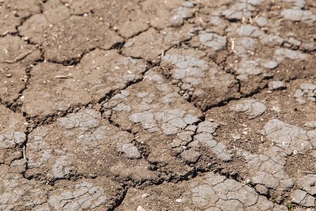 Текстура высохшей потрескавшейся земли из-за отсутствия дождя и сезона засухи пример изменения климата
