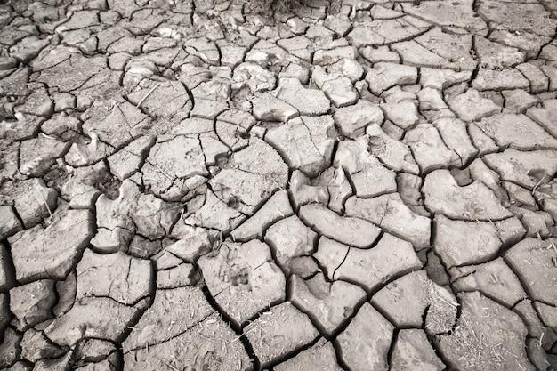 乾燥した割れた地球のテクスチャ