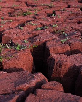 마른 금이 간 진흙의 질감. 지구상의 물 부족. 덥고 건조한 날씨.늪의 균열.