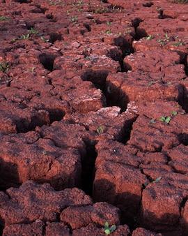 Текстура сухой потрескавшейся грязи. глобальный дефицит воды на планете. жаркая и сухая погода. болотные трещины.