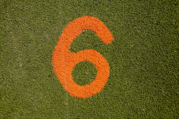 번호 6과 푸른 잔디의 질감