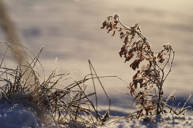 冬の氷の質感。冬の路上で凍った水の断片。冬と屋外の凍った水の質感と質感。
