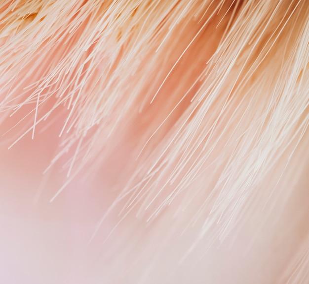 ピンク色の多くの光ファイバーの質感