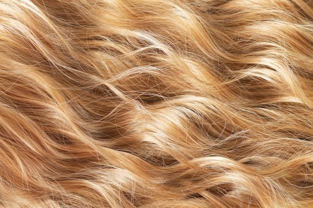 자연스러운 긴 금발 웨이브 머리의 질감. 머리 자르기, 스타일링, 관리 또는 확장 개념