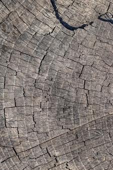 Текстура старой потрескавшейся деревянной поверхности, деревянный фон