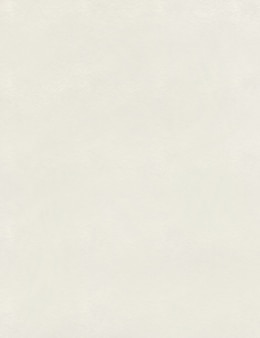 テクスチャードグレイン水彩紙のテクスチャ。テクスチャードグレイン水彩紙のテクスチャ。描画用テクスチャ紙。高品質のイラスト