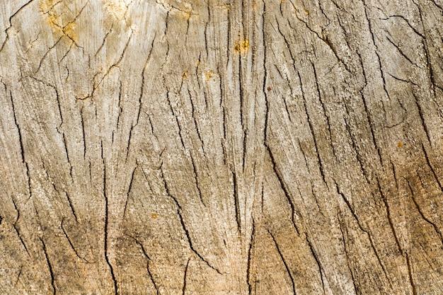 積み上げられた木の質感