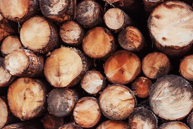 木の質感。冬に向けて準備された多くの丸太の正面のクローズアップ。自然の背景