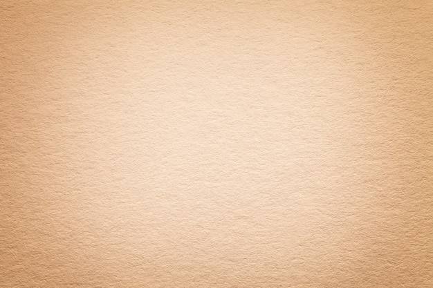 Texture of old light beige paper background, closeup. structure of dense cardboard.