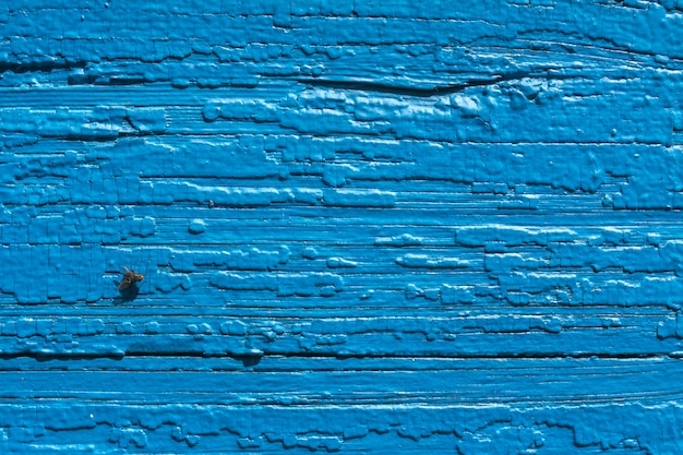 Texture. old painted wall of the house. old wooden fence. blue paint. fly on board.