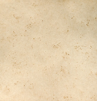 Texture of old paper, yellow tint colors background