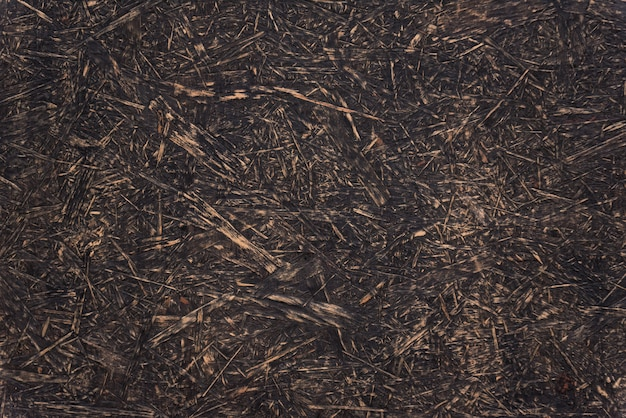 Texture of old wood background abstract surface. chipboard material. osb boards